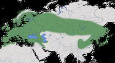Karte zur Verbreitung des Eichelhähers (Garrulus glandarius)
