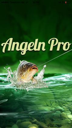 Angel App Kostenlos
