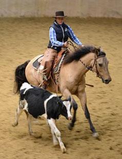 Am meisten Spaß macht meinem Pferd Cisco und mir die Cow Work.