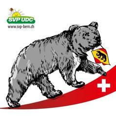 SVP Kanton Bern, SVP Wangen an der Aare und Umgebung