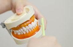 八戸市の歯医者くぼた歯科医院乳歯歯石