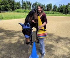 Ein pferdegestütztes Coaching vermittelt Leichtigkeit - horse-feedback.ch