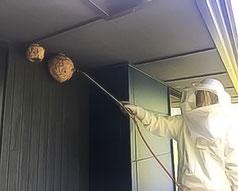 集合住宅の環境管理サービス/ハチ対策
