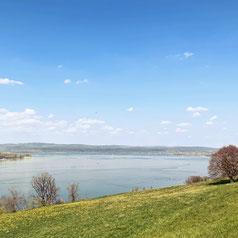 Der Thurgauer Fabelweg ist ein Ausflugstipp am Bodensee für Familien.