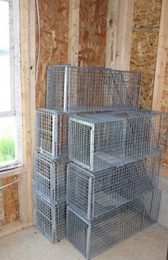 Automatic traps