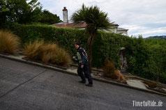 Neuseeland - Motorrad - Reise - Dunedin - Baldwin Street - Steilste Straße der Welt