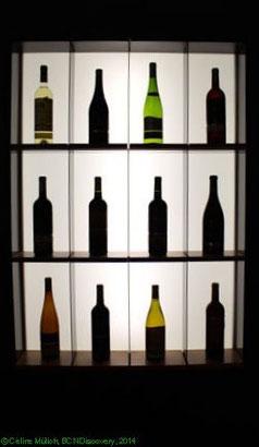 Wein vom Gut Torres