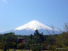 写真集:富士山