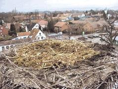 präpariertes Nest auf dem Brennereikamin in Hille Foto: Burmester/MT 14.03.10