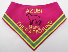 Therapie Assistenzhund Halstuch / Therapiehund, Azubi