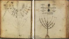 menorah in Palatina Library, Parma, Italy Cod. Parm. 2295