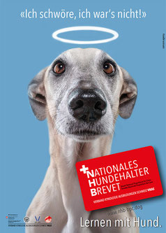 Nationales Hundehalterbrevet NHB Bad Zurzach
