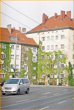 Prenzlauer Berg Zeitung Magazin