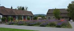 Kareebebauung und Salinengebäude