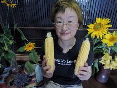 8月のトウモロコシとひまわり