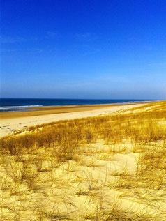 La côte atlantique (J. Lacoste)