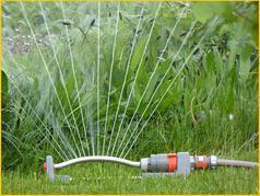 Bild: Bei praller Sonne sollte nicht beregnet werden, da die Wassertropfen auf den Gräsern zu Verbrennungen führen könnten.