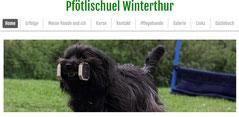 Pfötlischuel Winterthur