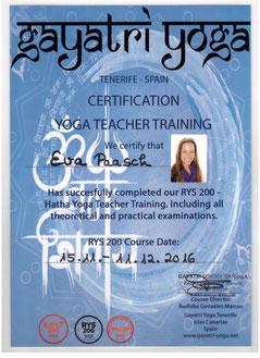 Hatha Yin Yoga Eva Paasch Yogalehrerin Travelling Yogini Zertifikat