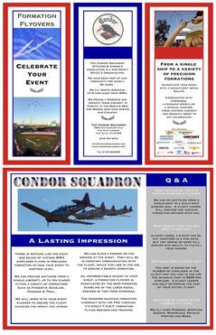 Condor Celebrate Poster