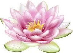 本来の人生を生きるためには、世界で一輪だけのイキイキと咲かせることです。