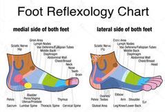 """<img src=""""foot-reflexology-chart.jpg"""" alt=""""foot reflexology chart and their meanings"""">"""