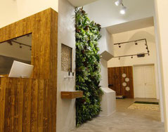 Jardín vertical interior empotrado en la pared, plantado con varias plantas tropicales