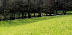 Das Ölschnitztal im Naturpark Fichtelgebirge