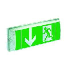 Ceag LED Leuchte Einzelbatterie und Funkionstest automatisch