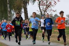 2,5km Schülerlauf