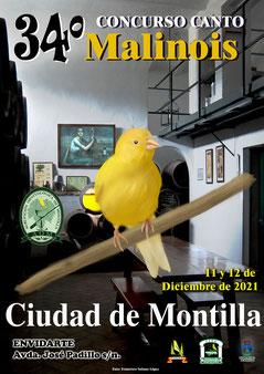 33 Concurso C Malinois