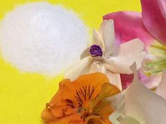 光浄ペットメモリアルのペット粉骨画像