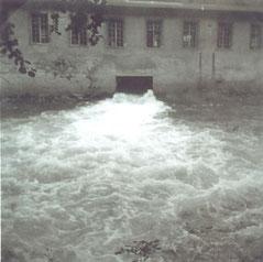 Bild: Wünschendorf Vogelmühle