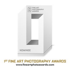 Award Photographe Yvelines
