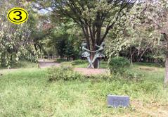 記念樹の森の中央にある銅像
