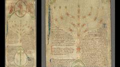 Menorah, Compendium historiae in genealogia Christi. Peter of Poitiers