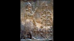 Babylon Tree of Life, Menorah, Babylonian Christmas tree