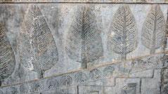 Menorah Tree of Life Bas-reliefs of the Apadana Palace, Persepolis, Iran, Christmas Tree Babylon Persia