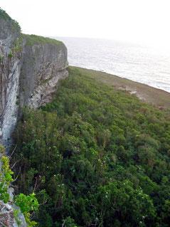 バードサンクチャリーの断崖