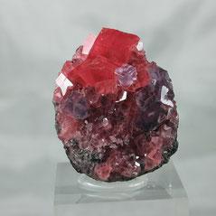 Rhodochrosite with Fluorite Sweet Home Mine Colorado USA