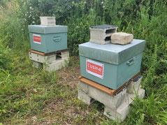 Les ruches de L'Usine Mode & Maison.