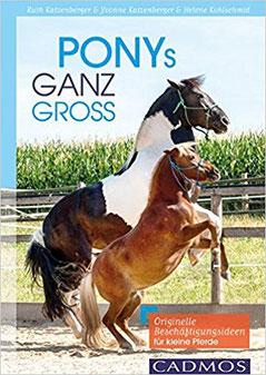 Ponys ganz groß - Originelle Beschäftigungsideen für kleine Pferde