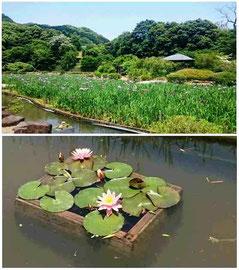 皿山公園(長崎県佐々町)