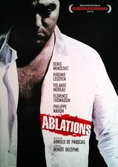 Ablations de Arnold De Parscau - 2013 / Thriller