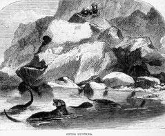 1856年オレゴン州クーズ湾のラッコ猟師。Courtesy Oregon History Project