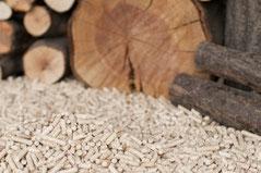 Bioenergieträger Holz | energy-vision.de