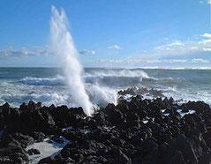 気仙沼市 岩井崎の潮吹き岩