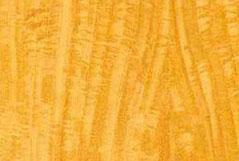 цитрон (лимонное дерево)