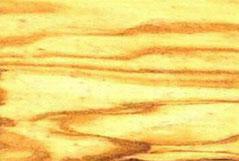 оливковое дерево (маслина)