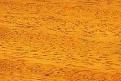 камбала (ироко)